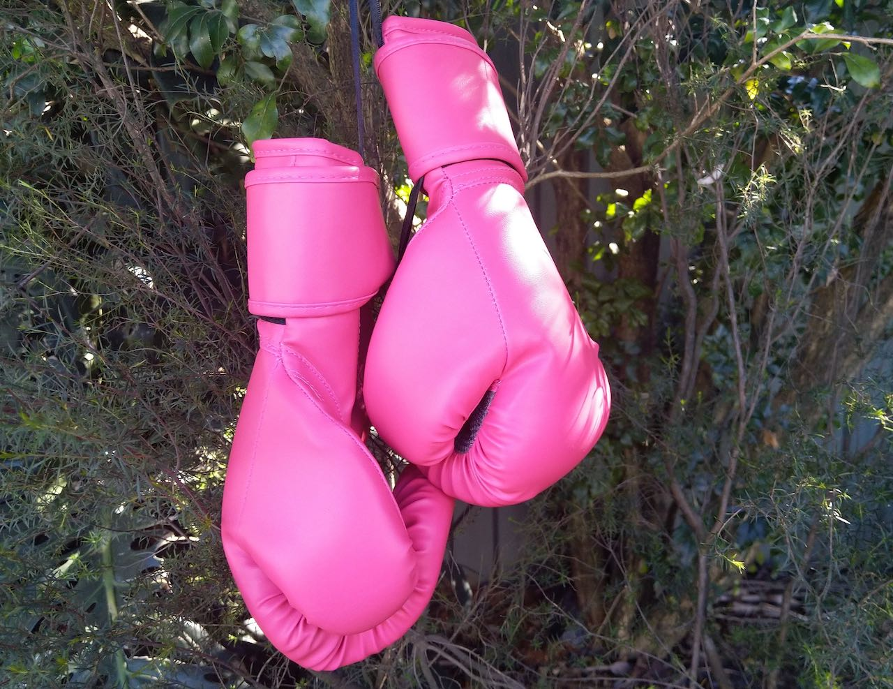 Boxing gloves active voice